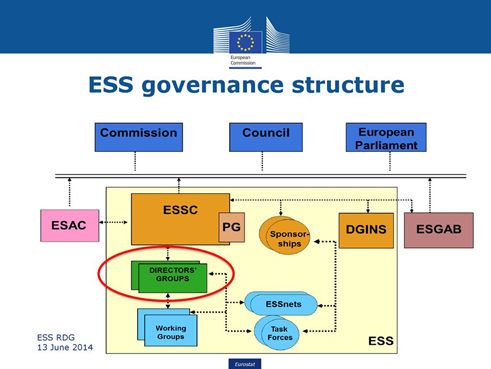 ESS governance structure