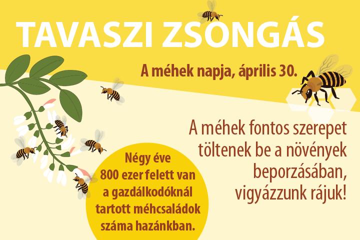 Tavaszi zsongás — A méhek napja, április 30.