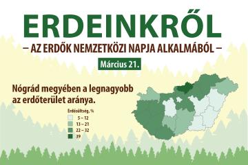 Erdeinkről – az Erdők Nemzetközi Napja alkalmából