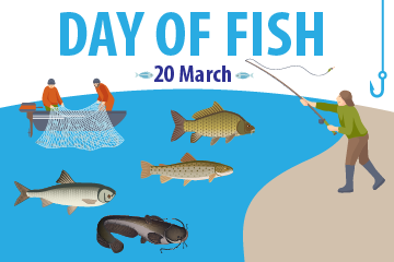 Day of fish
