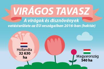Virágos tavasz – a virágok és dísznövények vetésterülete az EU…