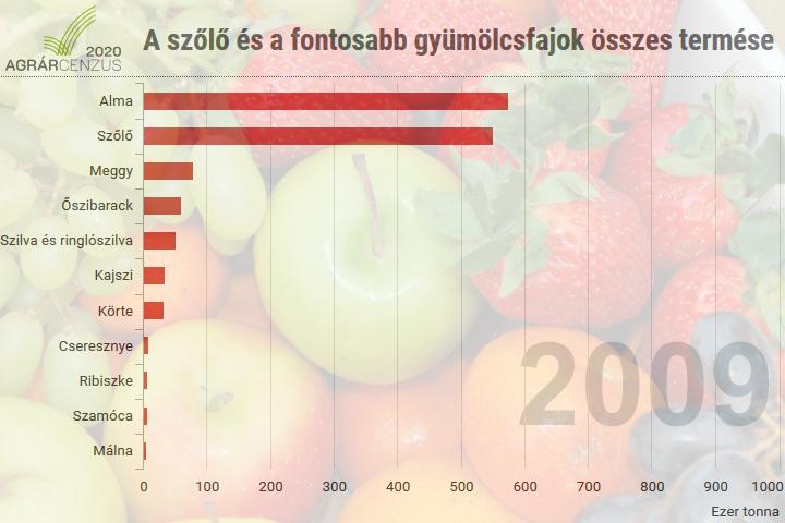 A szőlő és a fontosabb gyümölcsfajok összes termése, 1990–2018
